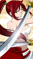 112 Erza fairy tail 21317442 480 864
